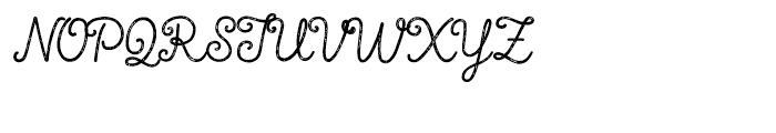 True North Textures Script Font UPPERCASE