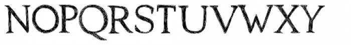 Traiectum Regular Font LOWERCASE