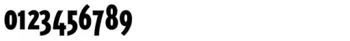 Triplex Condensed Sans Black Font OTHER CHARS