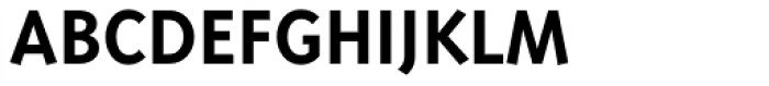 Triplex Sans Bold Font UPPERCASE