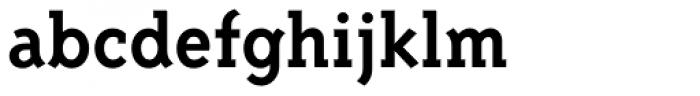 Triplex Serif Bold Font LOWERCASE