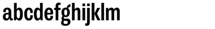 Trivia Grotesk N2 Bold Font LOWERCASE
