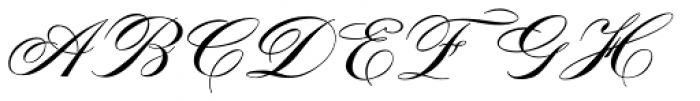 Tryst Monogram (10000 Impressions) Font UPPERCASE