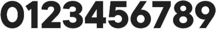 TT Commons otf (700) Font OTHER CHARS