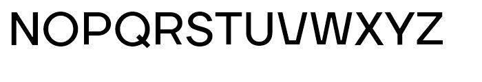 TT Firs Bold Font UPPERCASE