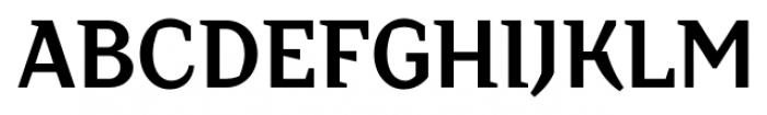 TT Crimsons Bold Font UPPERCASE