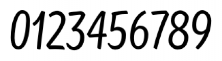 TT Masters Condensed Regular Font OTHER CHARS