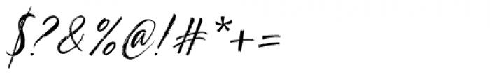 TT Berlinerins Script Font OTHER CHARS