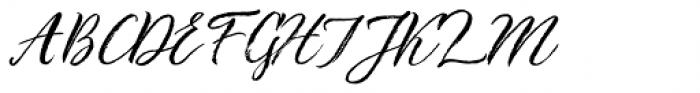 TT Berlinerins Script Font UPPERCASE