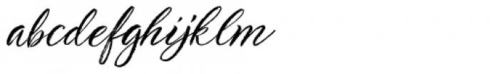 TT Berlinerins Script Font LOWERCASE
