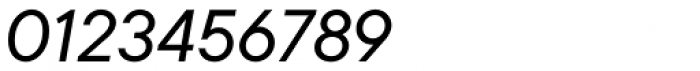 TT Commons Italic Font OTHER CHARS