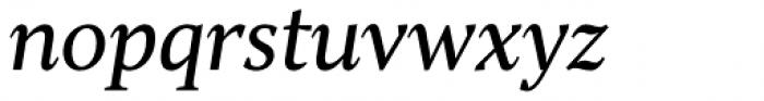 TT Jenevers Italic Font LOWERCASE
