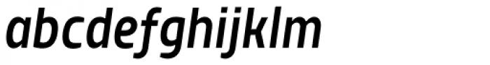 TT Teds Medium Italic Font LOWERCASE