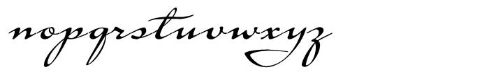 Tupelo Swash Caps Font LOWERCASE