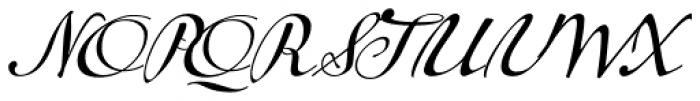 Tupelo Regular Font UPPERCASE