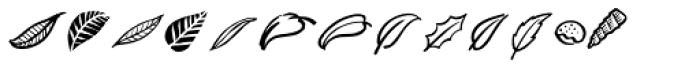 Turbinado Elements Font LOWERCASE
