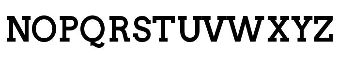 Twentytwelve Slab Bold Font UPPERCASE