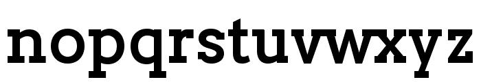 Twentytwelve Slab Bold Font LOWERCASE