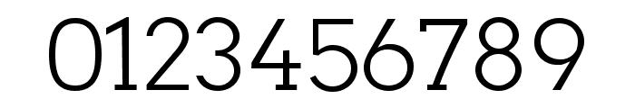 Twentytwelve Slab Light Font OTHER CHARS