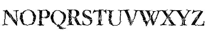 TwyliteZone-Book Font UPPERCASE