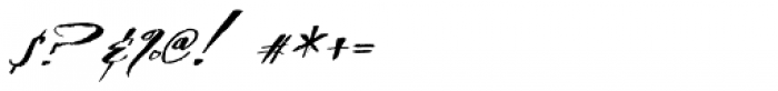 TXT Delicate Script Font OTHER CHARS