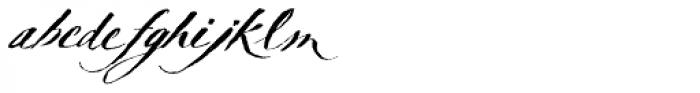 TXT Delicate Script Font LOWERCASE