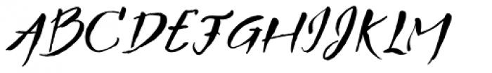 TXTBrush Script Font UPPERCASE