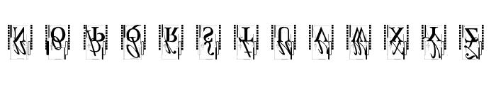 TypOasisInitials Font LOWERCASE