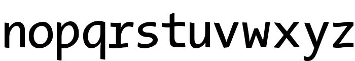TypeWritersSubstitute Font LOWERCASE
