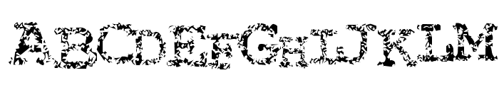 Typewriter from hell Font UPPERCASE