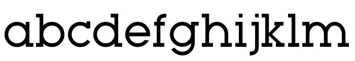 Typo GeoSlab Regular Demo Font LOWERCASE