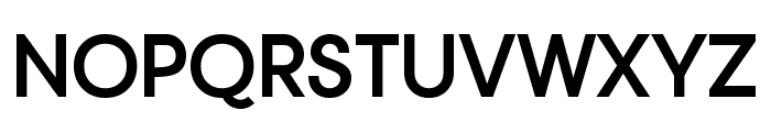 Typo Gotika Demo Bold Font UPPERCASE