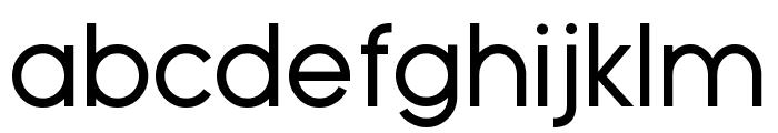 Typo Grotesk Font LOWERCASE
