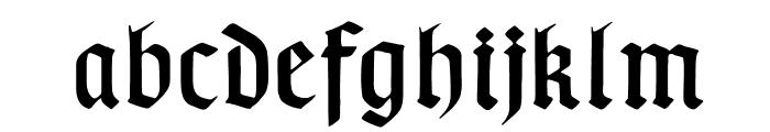 TypographerGotisch B Font LOWERCASE