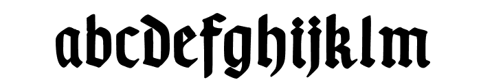 TypographerGotischA-Bold Font LOWERCASE