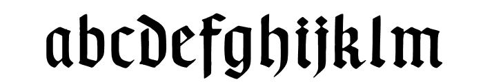 TypographerGotischA Font LOWERCASE