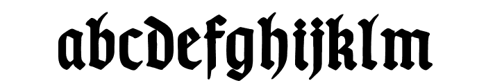 TypographerGotischSchmuck-Bold Font LOWERCASE