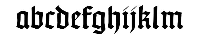 TypographerUncialgotisch Font LOWERCASE