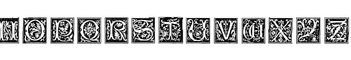 TypographerWoodcutInitialsOne Font UPPERCASE