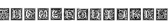 TypographerWoodcutInitialsOne Font LOWERCASE