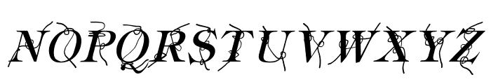 Typography ties Italic Font UPPERCASE