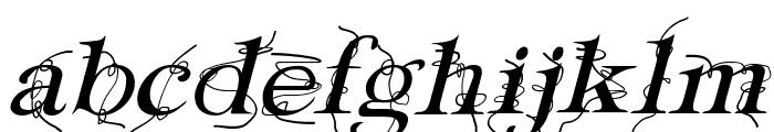 Typography ties Italic Font LOWERCASE
