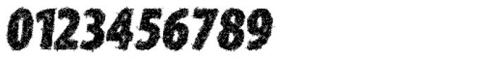 Type Xero Italic Font OTHER CHARS