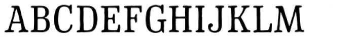 Typnic Roman Font UPPERCASE