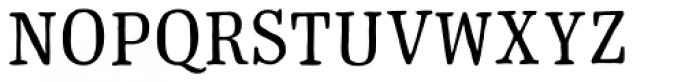 Typnic Roman Font LOWERCASE