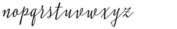 Typnic Script Font LOWERCASE
