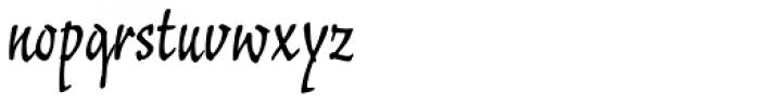 Typoskript Pro Font LOWERCASE