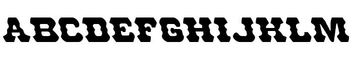 U.S. Marshal Leftalic Font LOWERCASE