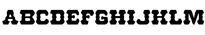U.S. Marshal Regular Font LOWERCASE