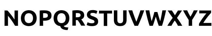 Ubuntu Bold Font UPPERCASE